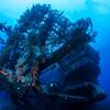 "Ship Wreck ""Charles L. Brown"", St. Eustatius"