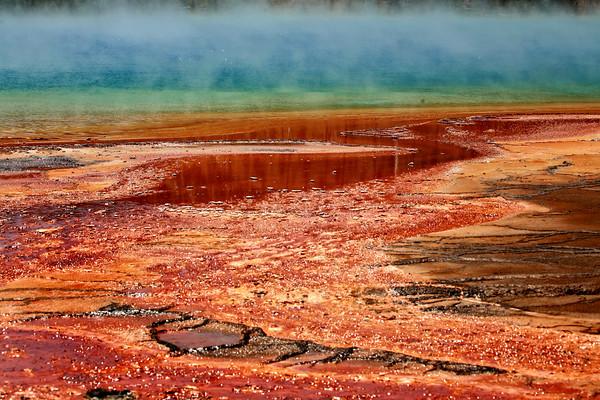 Yellowstone18