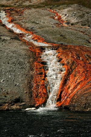 Yellowstone08