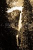 Yosemite Falls 08