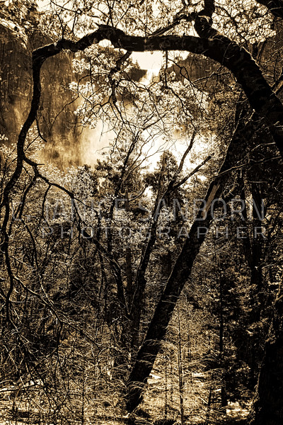 Bridal Veil 04