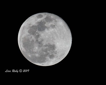 Super moon from San Diego - 02/19/2019 Only decent shot I got