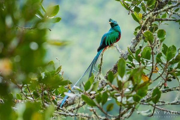 San Gerardo Valley, Costa Rica