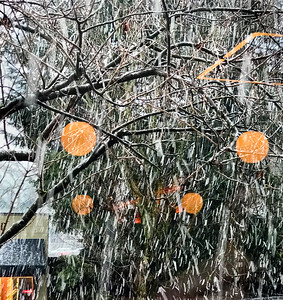 Snowfall with Globes & Reflections, Portland, 2018