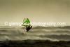 Windurfing the storm.