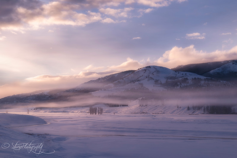 Pink Mist - Lamar Valley, Yellowstone 2018