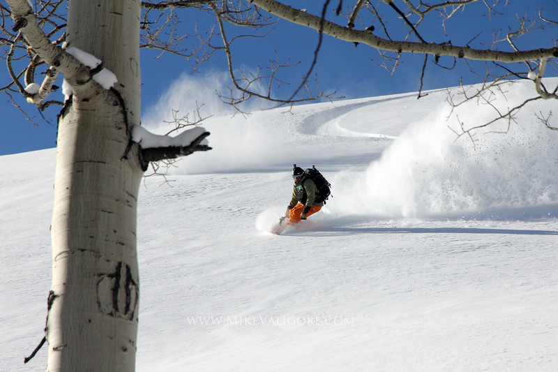 Backcountry snowboarding in the Wasatch<br /> Big Cottonwood Canyon, Utah<br /> <br /> Justin McCarty is partially framed by a lone aspen tree as he leans into another one of his powder turns.