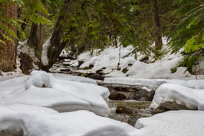 Winter Stream Near Nelson, B.C.