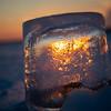 Frozen Luminary