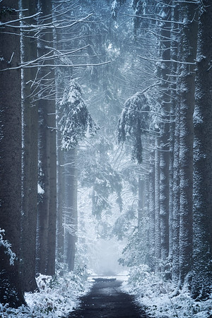 Leaving Narnia
