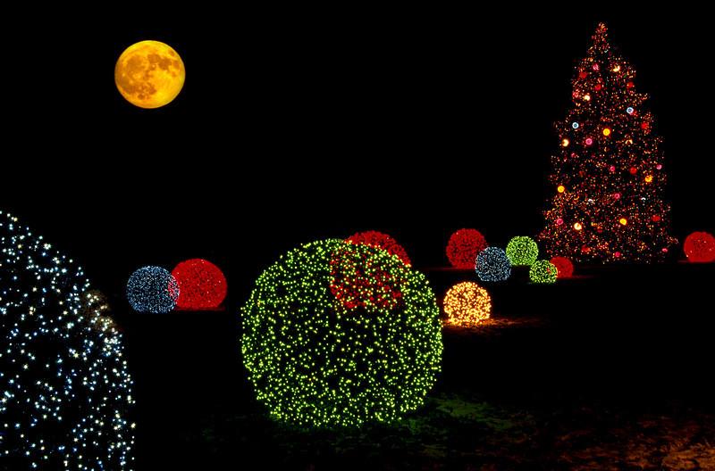 X-mas Tree Lights 3 (moon) r