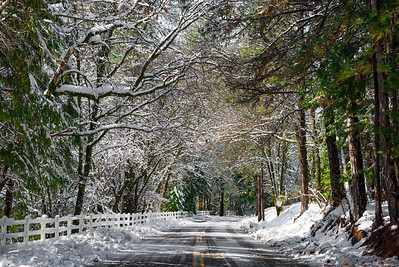 Winter scenery of a snowy road covered by trees.