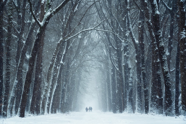 Walking in the snow storm