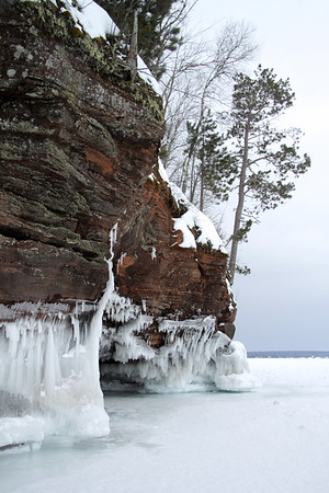 Lake wave ice, lichen and pines, and pines clinging to the sandstone rock cliff.
