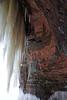 Sandstone - Lichen - Ice - and so slight view of