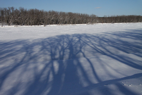 Hardwood tree shadows upon the St. Croix River - the boundary between here in MN with WI.