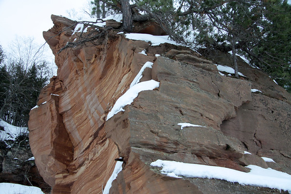 Snow, pines, and lichen - clinging to the sandstone cliffs.