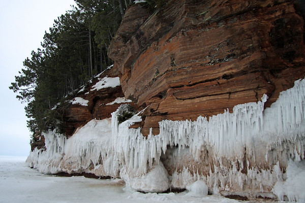 Frozen waves from Lake Superior, adhered to the sandstone cliffs, below the stand of pines.