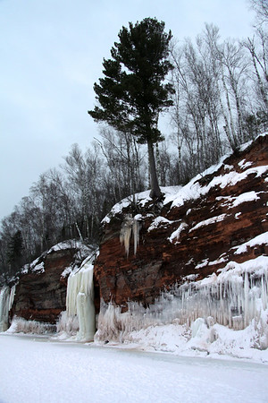 "White Pine along the sandstone ridge - with the frozen waterfall and ice column - along the ""Bowl"" area of the Bayfield Peninsula."