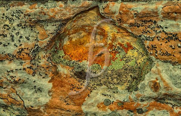 Stone Art II