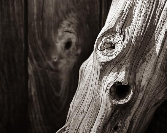 Weathered Wood on Weathered Wood, Sepia Toned