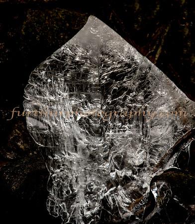 Ice Sculpture I