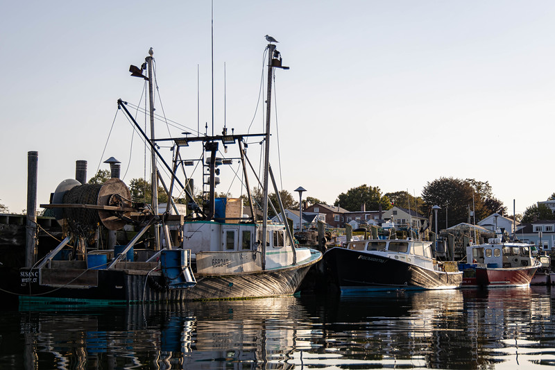Lobster Boats at Sunrise