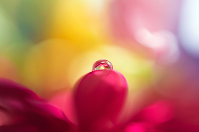 Macro droplet21