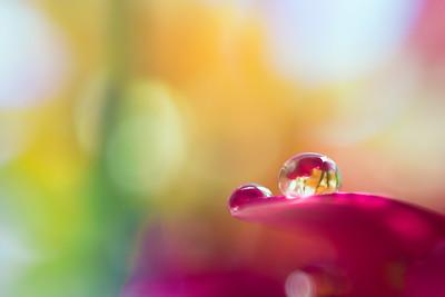 Macro droplet22