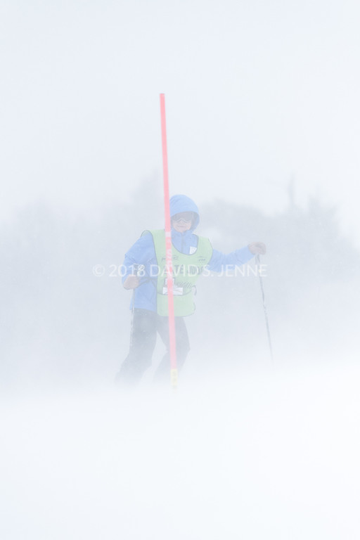 Audi FIS Ski World Cup Womens Slalom Killington Vt-20171126-01