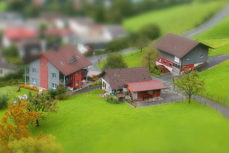 Little Swiss Farm