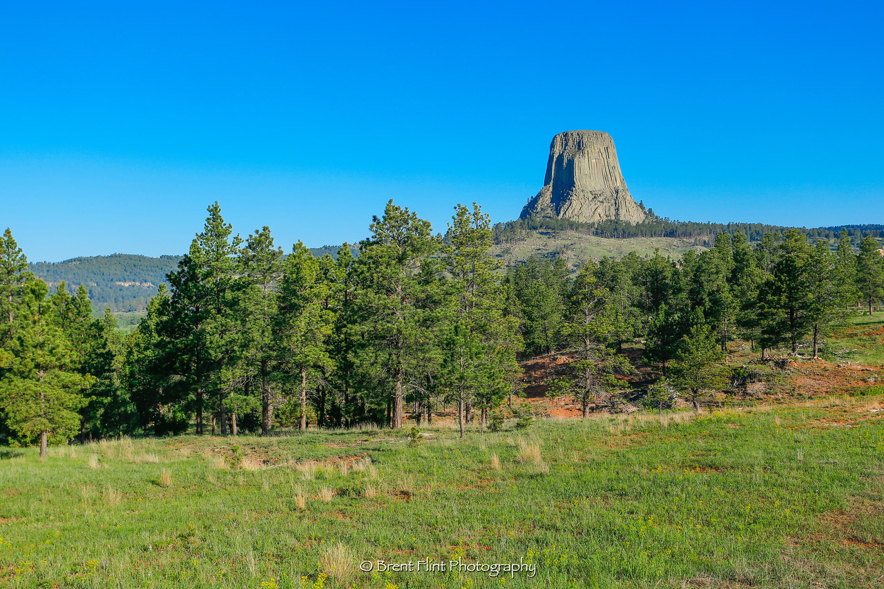 DF.4282 - Devil's Tower National Monument, WY.