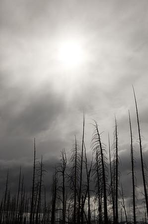 Sol, Yellowstone Roadside