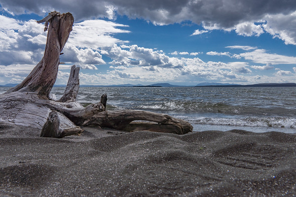 Yellowstone Lake Shore