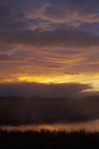 Dawn, Madison II