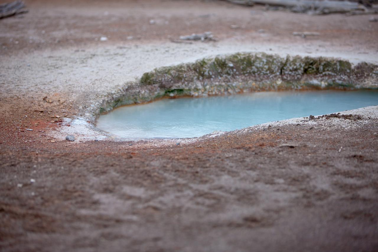 Spring Water, Detail
