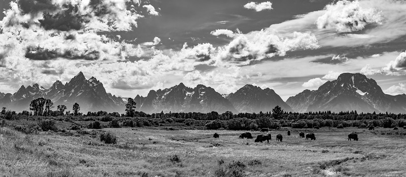 Wild, wild west - Grand Teton NP, 2016