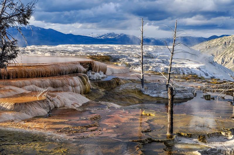 Multi Colors of Mammoth Hot Springs