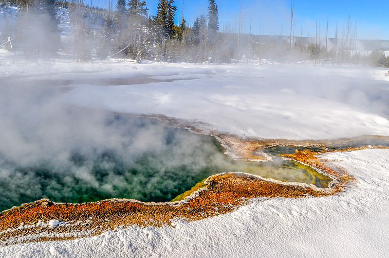 Color Contrasts in Yellowstone Winter