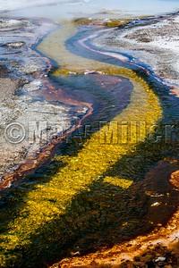 Geyser Basin Flow