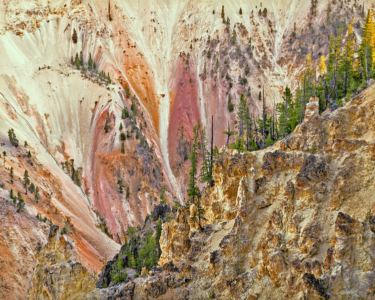 Grand Canyon of the  Yellowstone, Study # 1