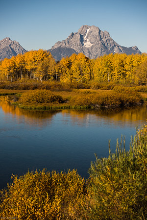 yellowstone-teton-3219