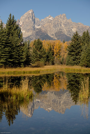 yellowstone-teton-3242