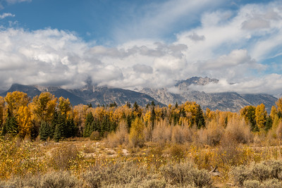 yellowstone-teton-6507