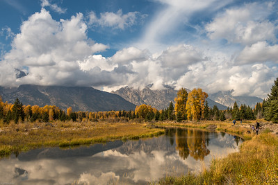 yellowstone-teton-6525