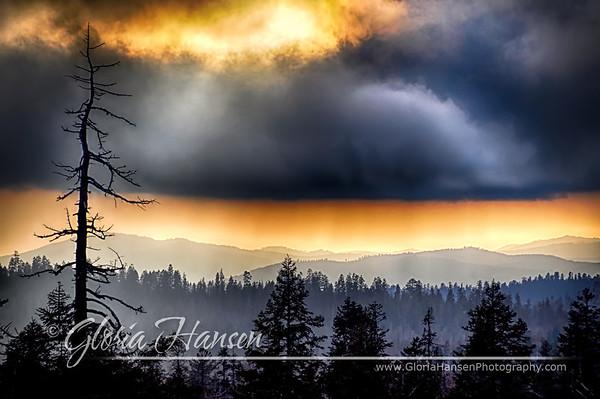 Yosemite_DSC0049-Hansen