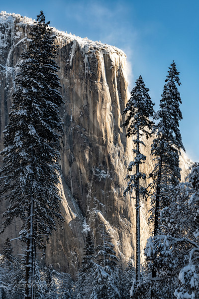 El Cap on a winter morning  - Yosemite NP, 2019