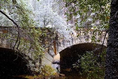 Arches in Autumn