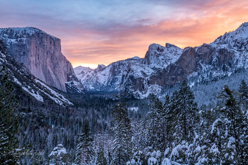 A famous view in white and pink - Yosemite NP, 2019