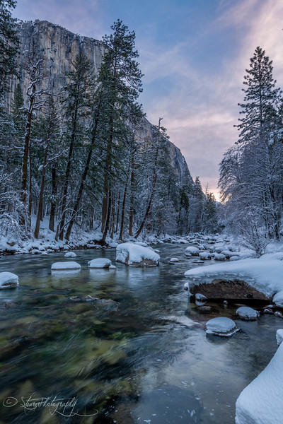 Pastel morning - Yosemite NP, 2019
